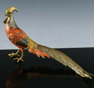 Antique Franz Bergman Austrian Cold Painted Bronze Golden Pheasant Bird Figure