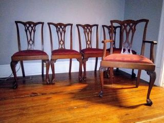 Early 1900s Potthast Bros Chippendale Mahogany Ball And Claw Foot Dining Chairs