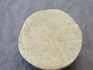 very rare indeed Viking stone gaming piece.  L160z 3
