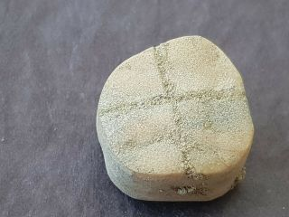 Very Rare Indeed Viking Stone Gaming Piece.  L158d