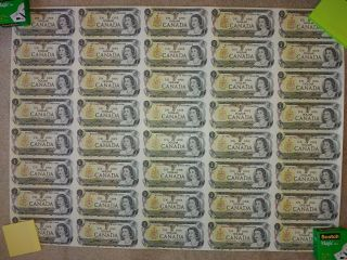 Uncut Sheet Of 40 Uncirculated Canadian One Dollar Bills $1 (1973)